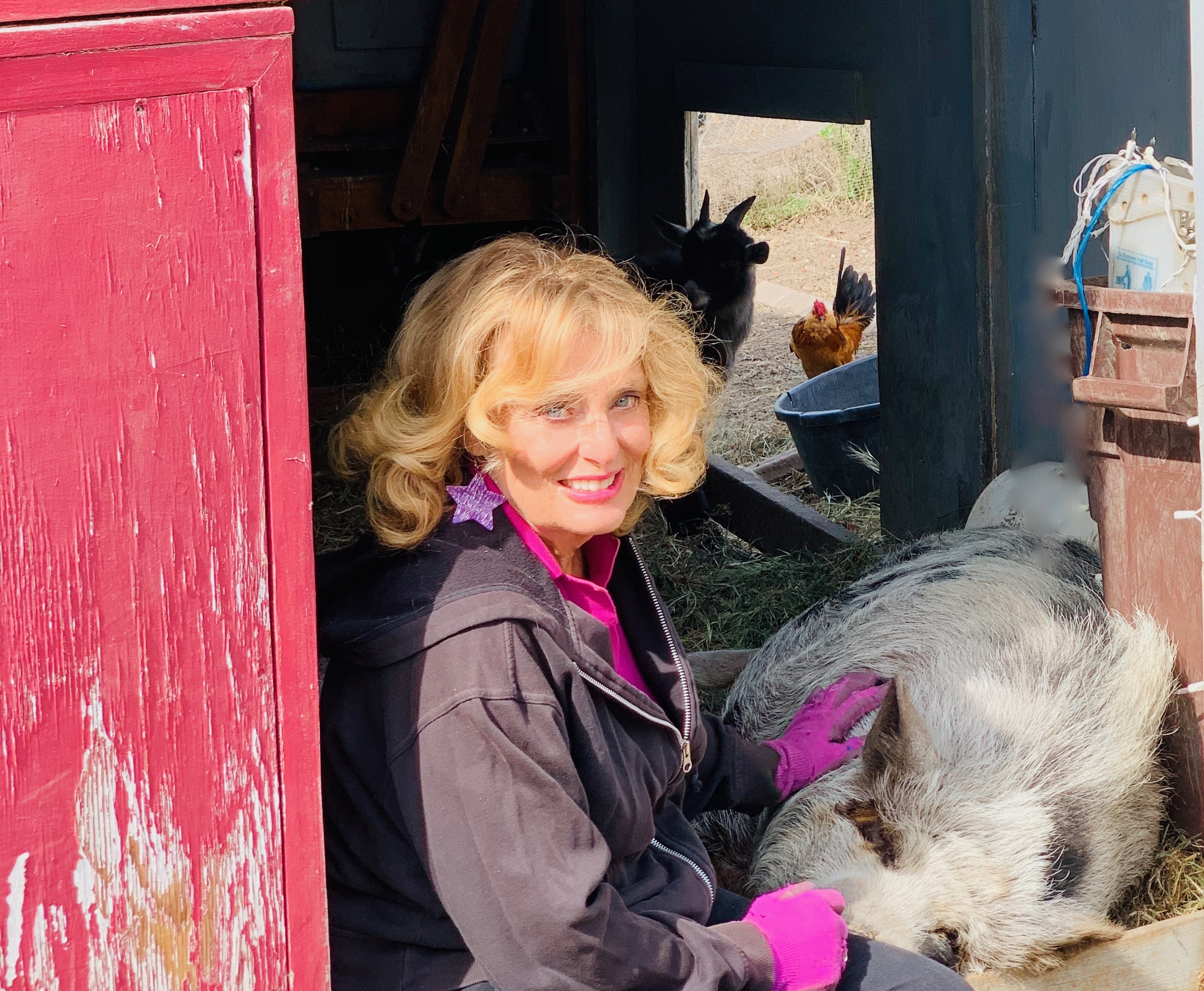 Cynthia Brian with her adopted  barnyard