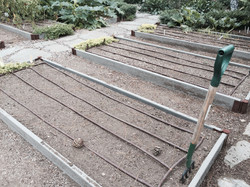 Prepping Vegetable Beds with Drip