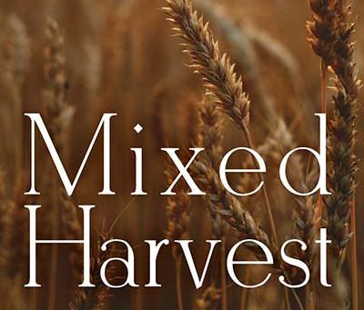 Cultivating Gratitude, Last Days of Sylvia Plath, Mixed Harvest