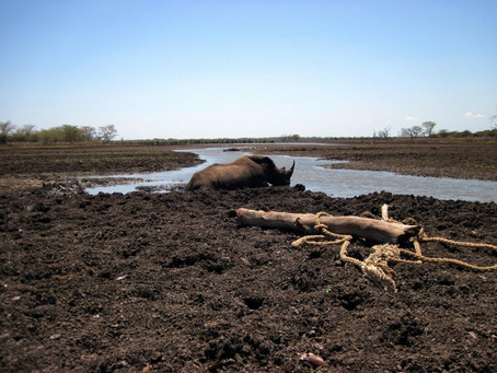 South African Water Crisis