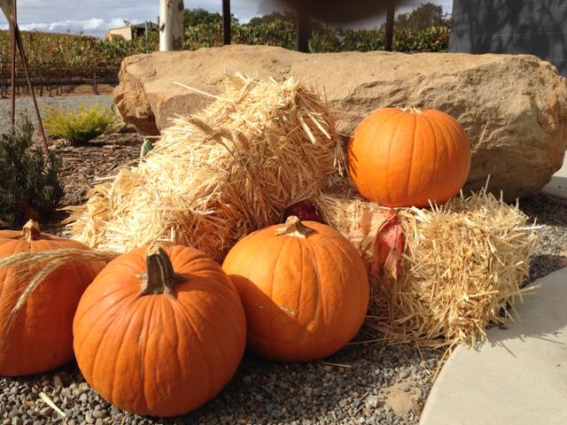 Pumpkins in the Hay