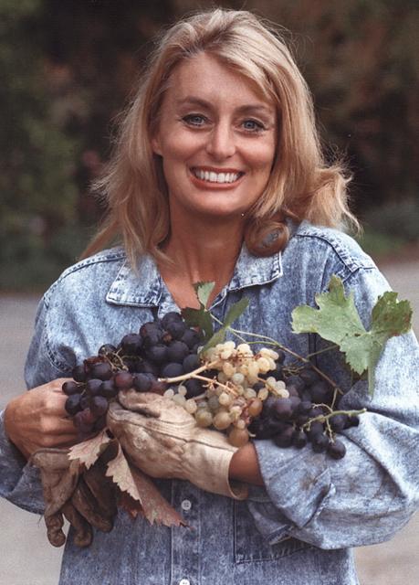 Cynthia Brian-Vineyard Heritage