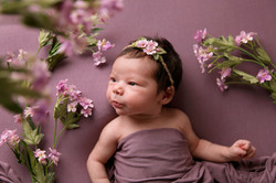 Newborn shoot Telford