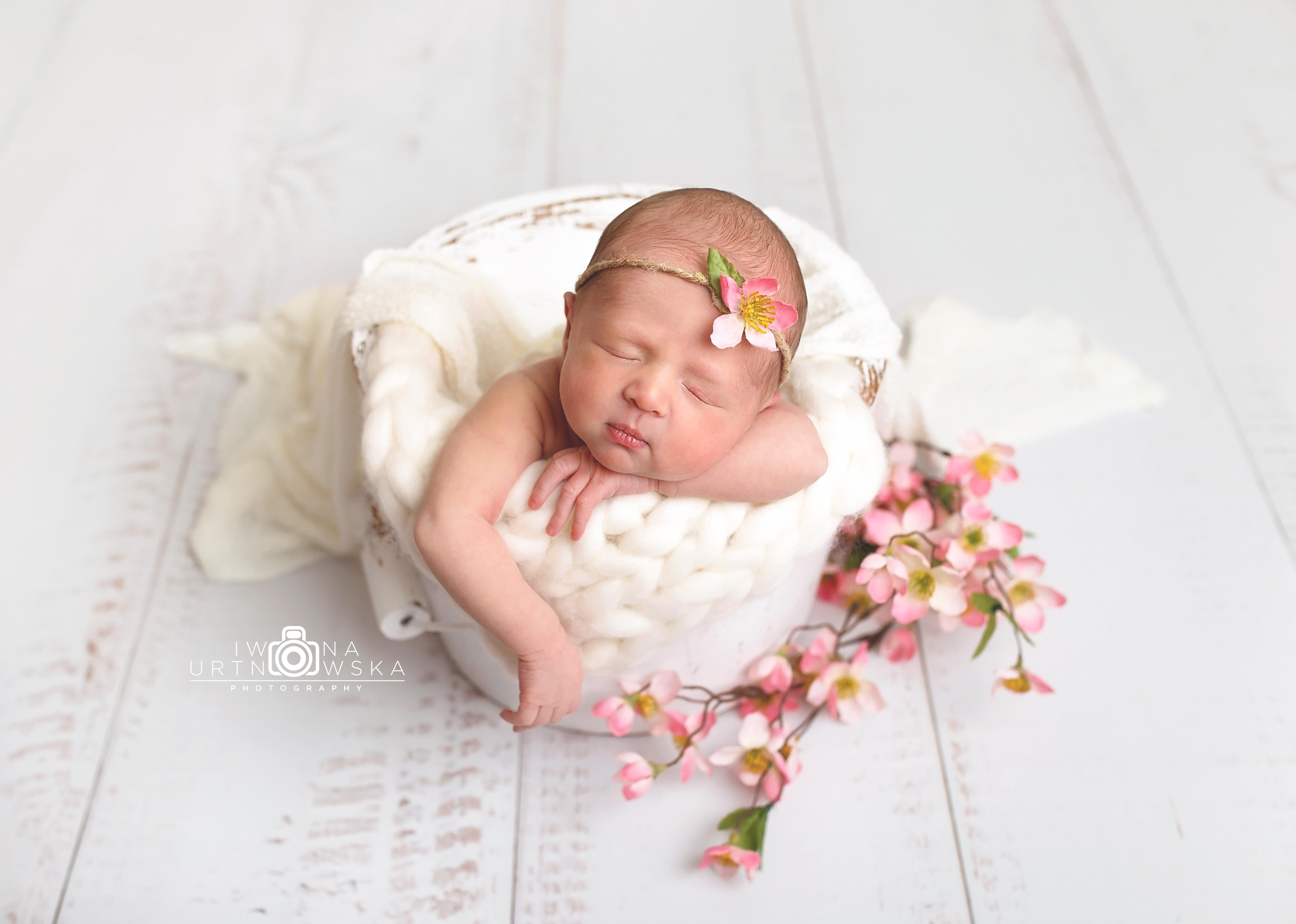 Posing newborns Shropshire