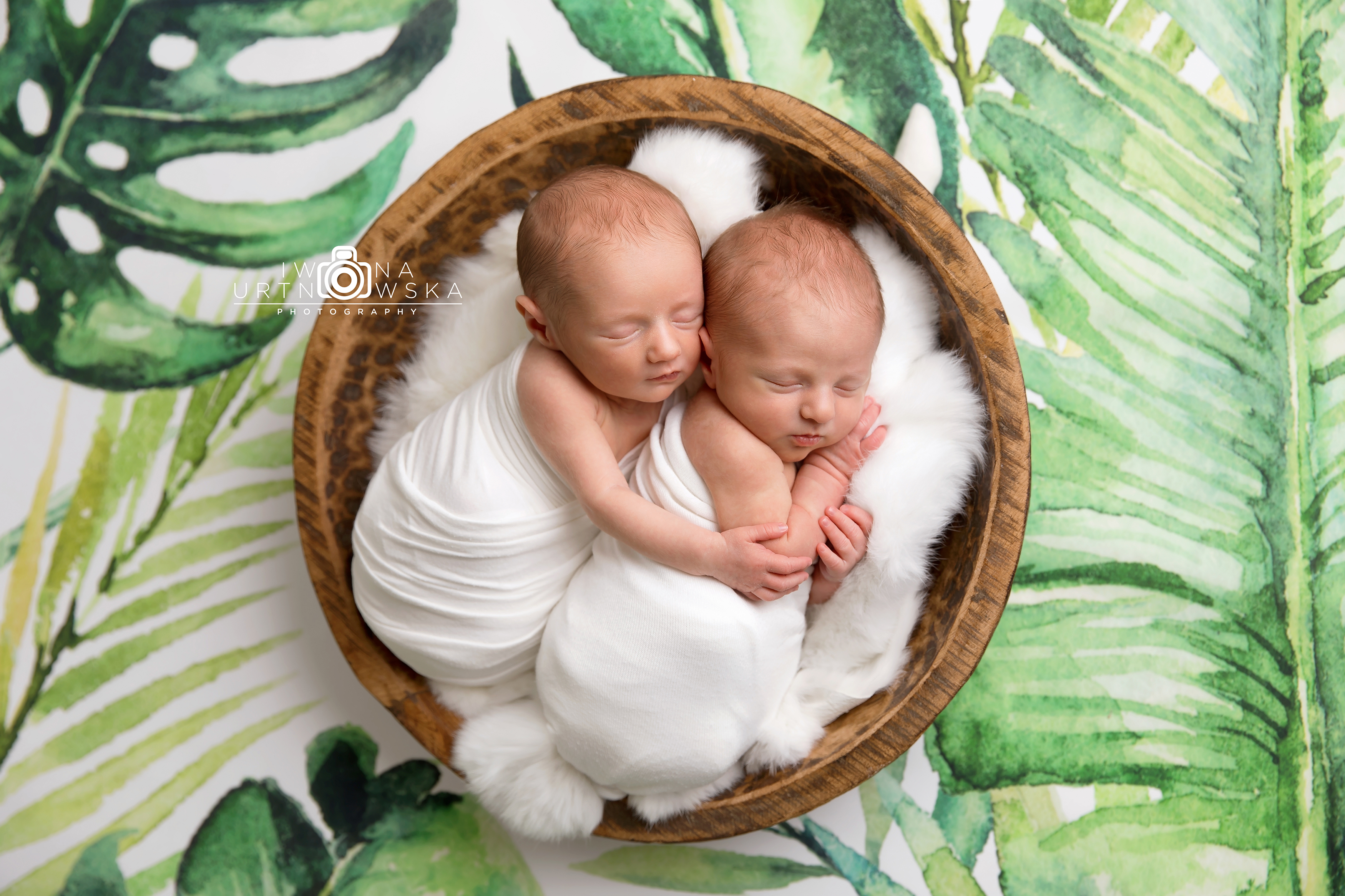 twins newborn session Shropshire