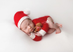 Newborn christmas themed session