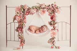 Posing newborns Telford