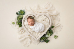 Floral newborn  set up