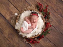 Newborn posing Telford