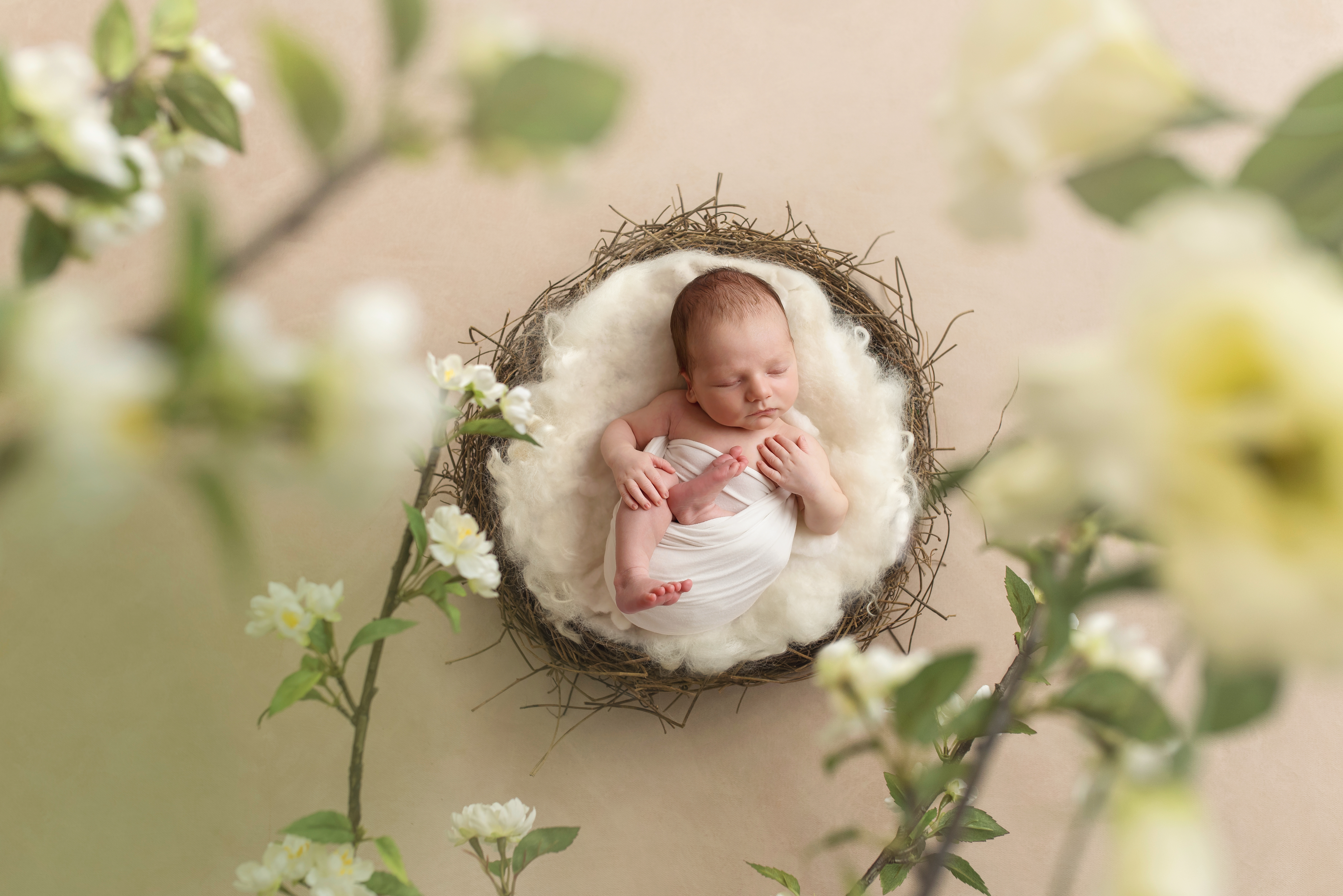 Newborn photoshoot Telford