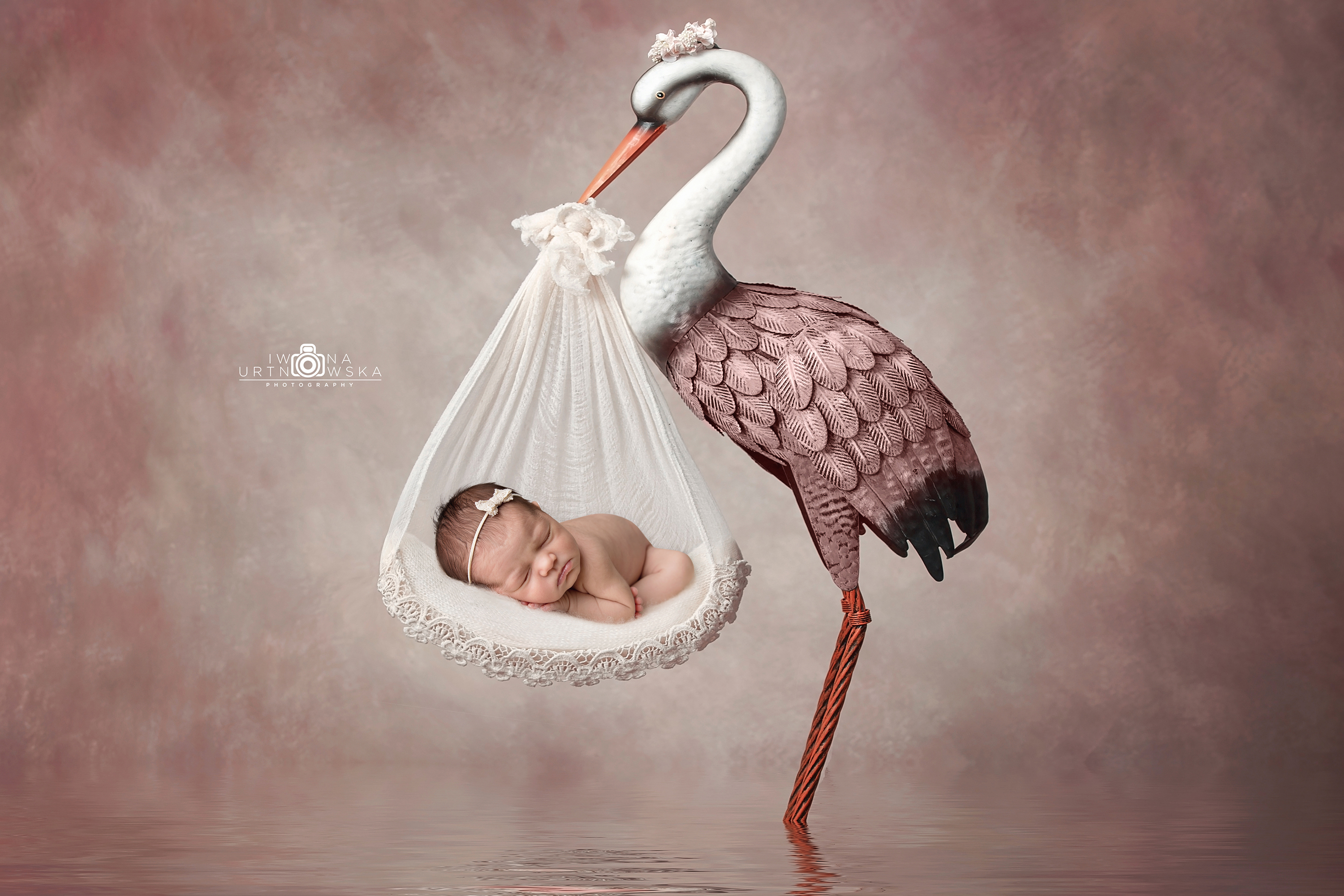 newborn baby girl photographer