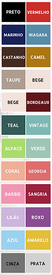 paleta cores bicolor.png