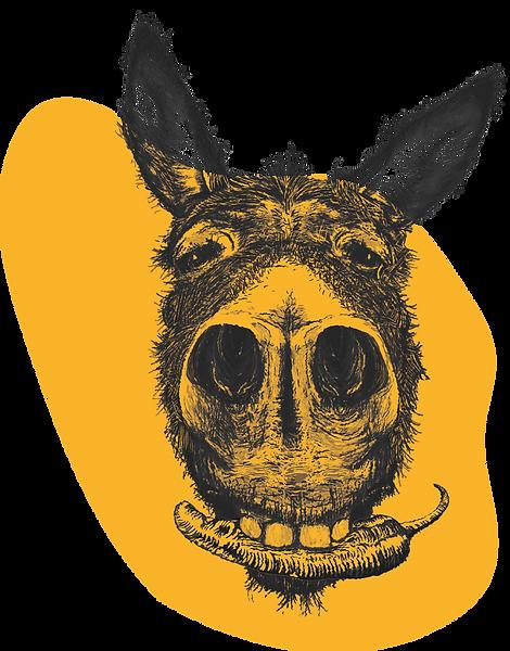 Burro mascot organic pepper sauce fan jalapeño habanero chipotle