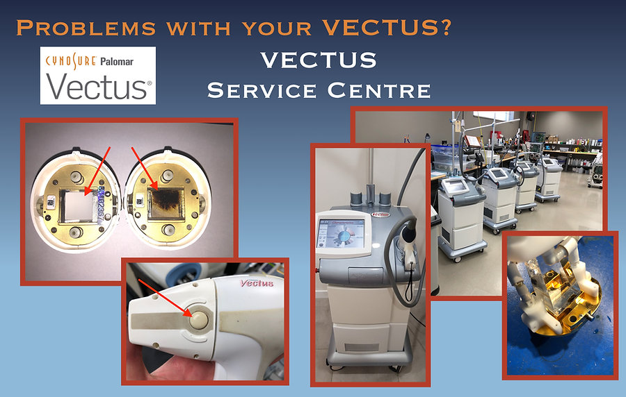 VECTUS Web page English.jpg