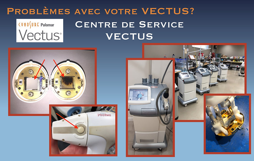 VECTUS Web page French.jpg