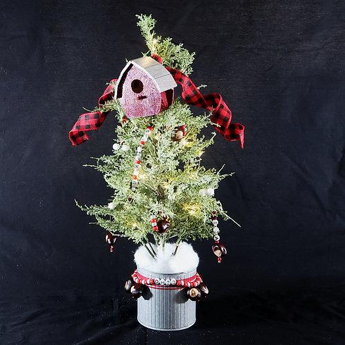 Tree Buckeye Ohio