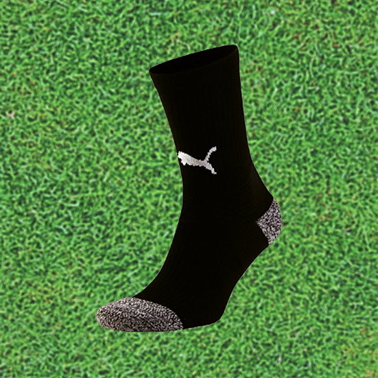 teamLIGA training Socks