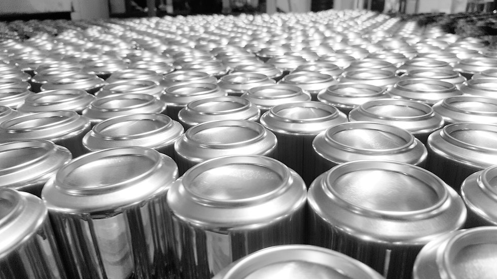 CANS Mexico plant BW.jpg