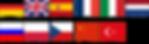 Menü Dil Seçenekleri.png