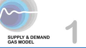 FlowTran-X Tutorial 1: Gas Supply - Demand Model
