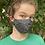 Thumbnail: JASP literary face mask