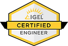 IGEL_ICE_logo_final.png