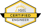IGEL_ICE_logo_final.png