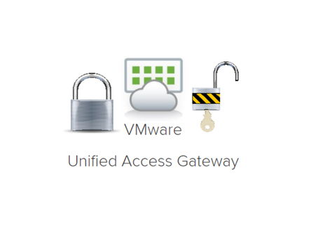 Securing the VMware Unified Access Gateway