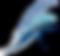 CHALFONTE%252520CLEAR_edited_edited_edit