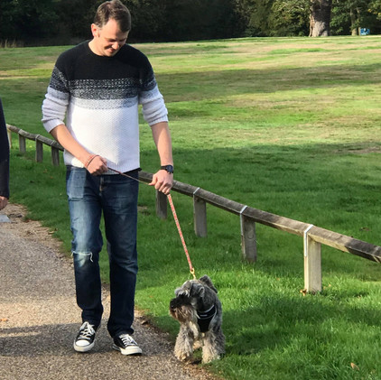 Sebastian out on a walk