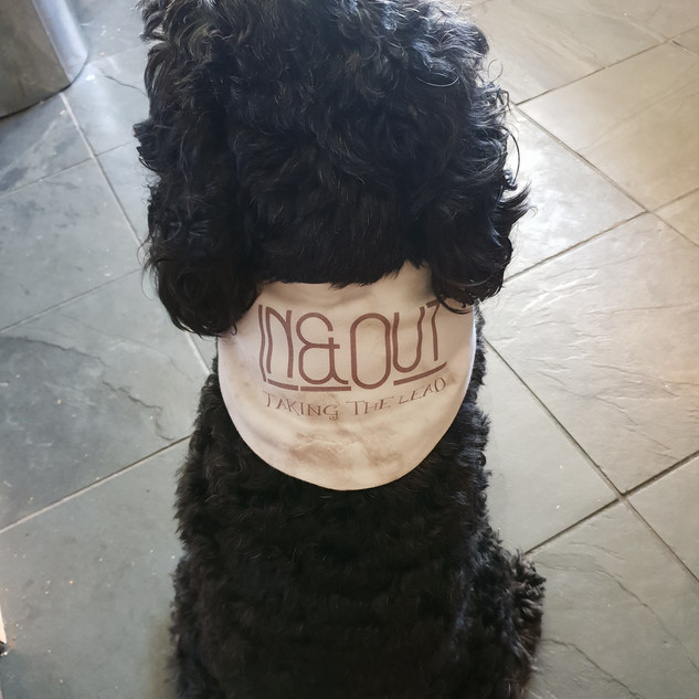 Max sporting Merchadise