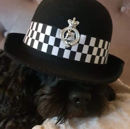 Police Max