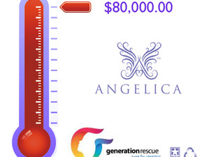 Angelica Bangles Raise $80K for Autism