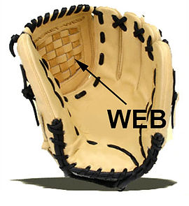 Custom Web restoration replacement: $89.00 to $110 depending on the scope of the work