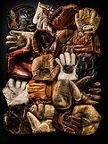 Baseball Glove Collectior