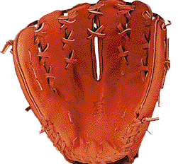 Some Thoughts on Glove Leather