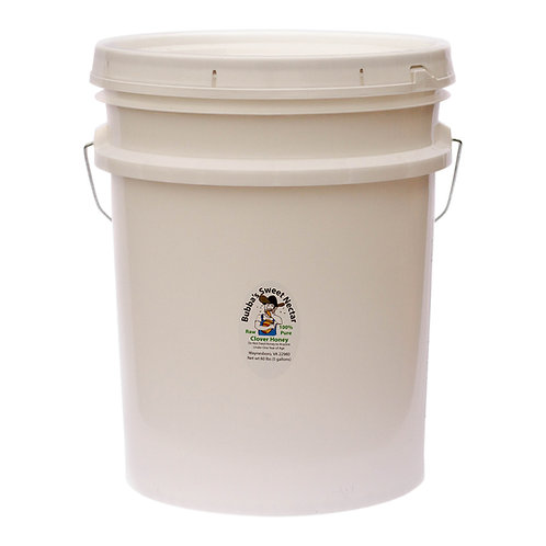 Wholesale Clover Honey 5 Gallons- 60 Lbs