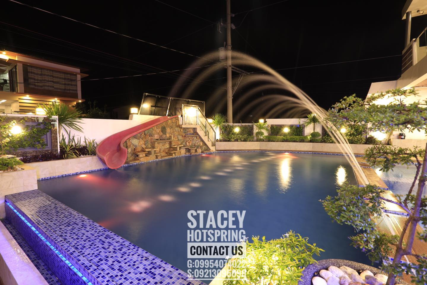 Stacey 29