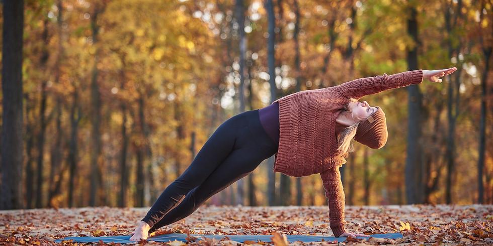 reprise des cours yoga adulte