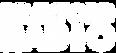 Brayford Logo Text White.png