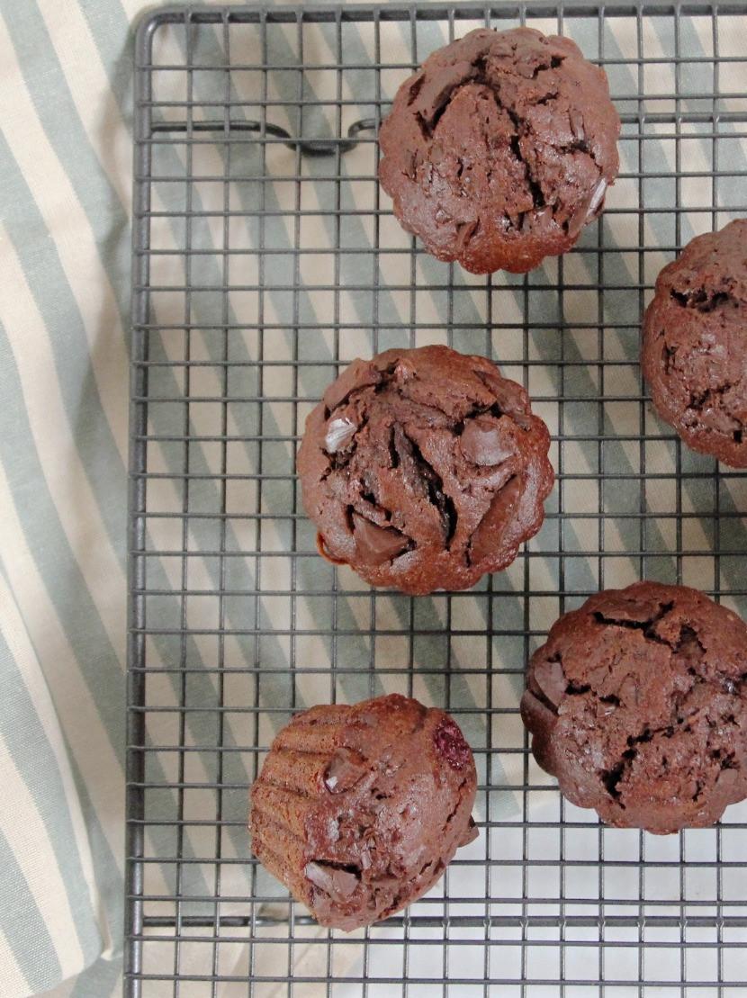 Best chocolate muffins recipe ever