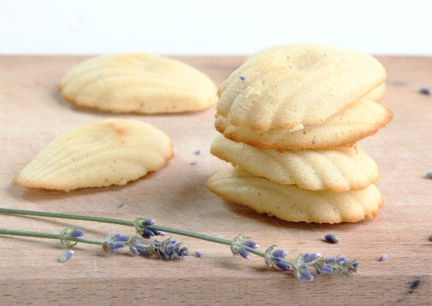 yummi french recipe for morning - madeleines