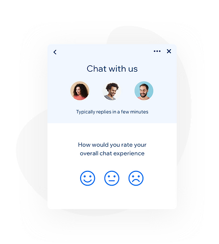 Live Chat new assets5.png