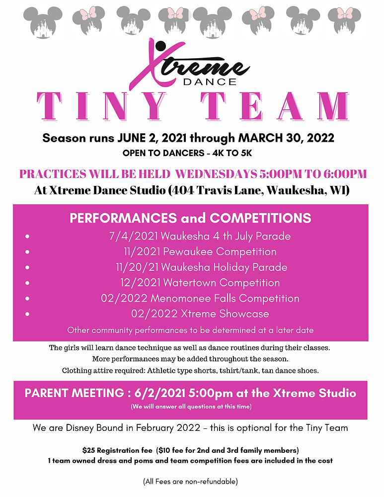 Tiny Team Flyer 2021-2022 (2).png