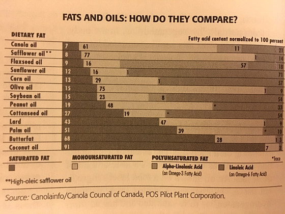 What's the Deal with Oil?