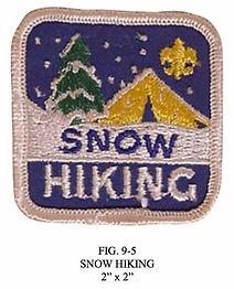 Snow Camper Award.jpg