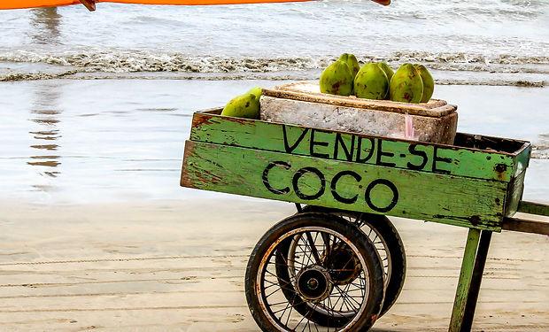 Vende-se Coco_ Coconut for sale in Brazi