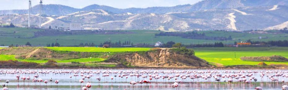 Aliki-Salt-Lake.jpg
