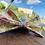 Thumbnail: Noeud papillon Star