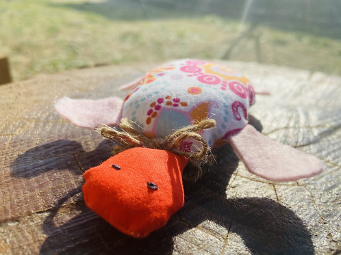 Tortue Rosy